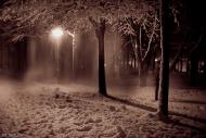 Снежный выборг