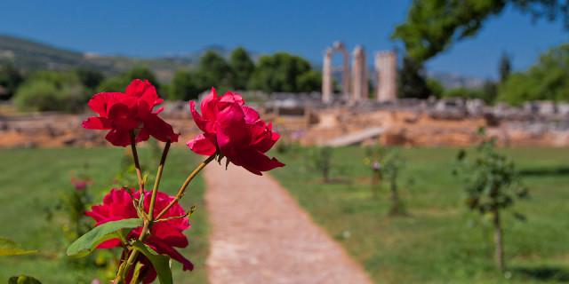Древняя Немея. Пелопоннес