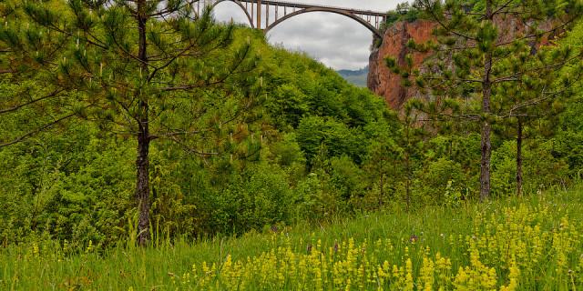 Дурмитор. Каньон реки Тара. Черногория