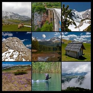 Черногория 2012. Содержание