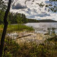 Коловеси и геокешинг. Финляндия